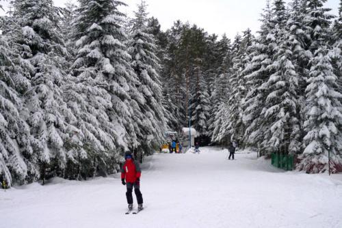 Sezon2011 2012-24
